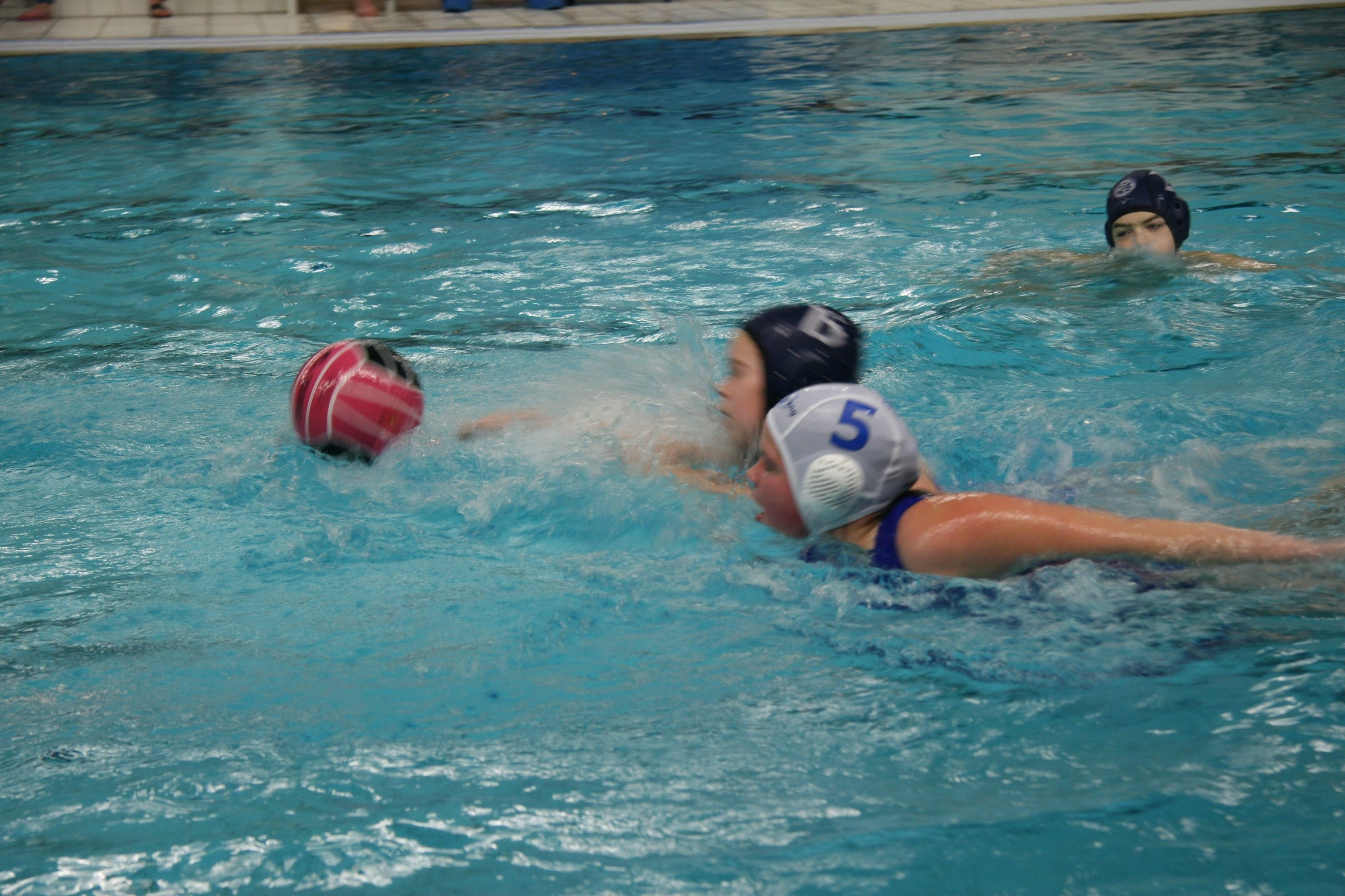 https://www.zvdespreng.nl/wp-content/uploads/2016/11/water-polo.jpg